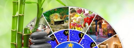 Entre Astrologie et Astro Logis®